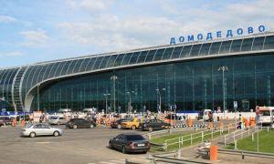 Путеводитель по аэропорту Москвы Домодедово