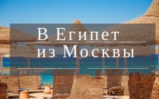Сколько лететь из Москвы в Египет