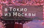 Сколько лететь с Москвы до Токио