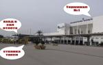 Трансфер из аэропорта Анталия